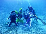 Fun Diving Picture03
