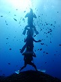 Fun Diving Picture04