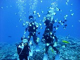 Fun Diving Picture06